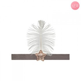 Feather and star headband